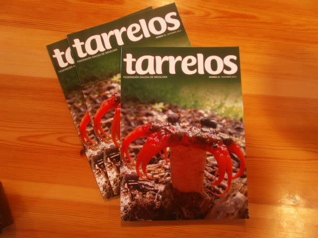 Tarrelos